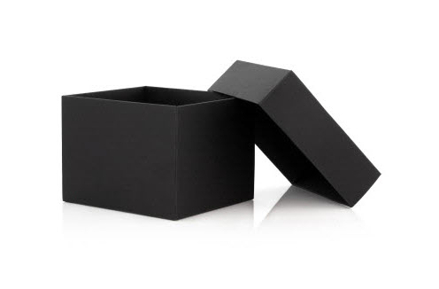 Using Predictive Coding – What's in the Black Box?